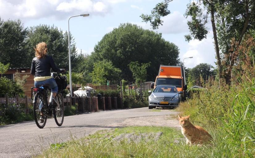 Verhitte discussies over nieuwe fietsstraat op deVechtdijk