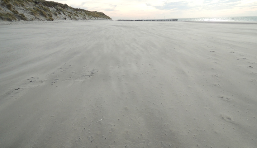Meeuwenduinen op Schouwen-Duiveland #beschermdekust